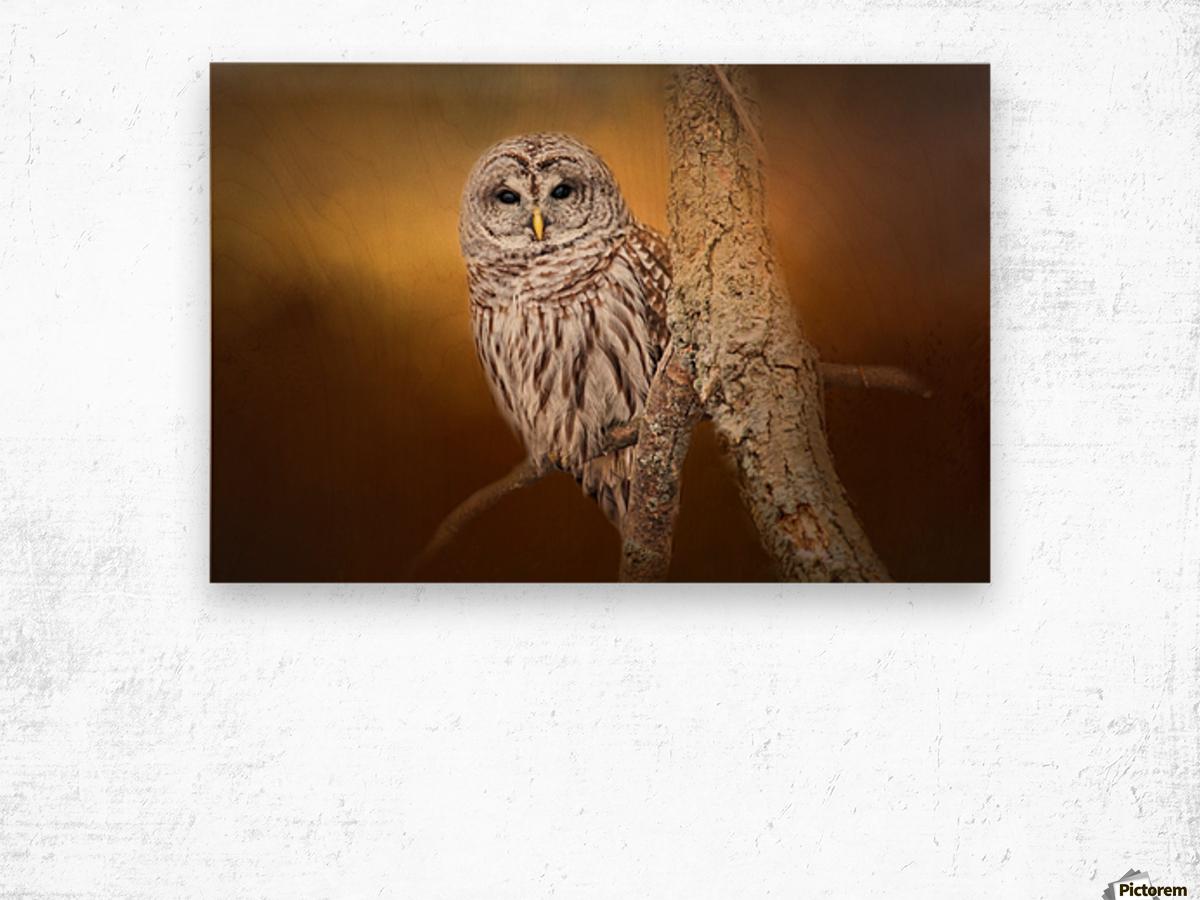 Seen Wood print