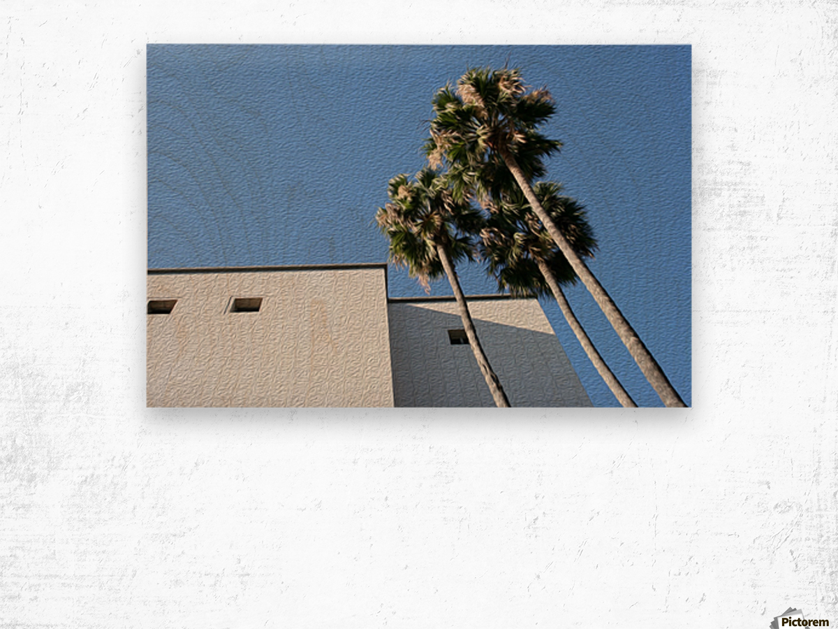 3 Palm Trees Next to Building Wood print