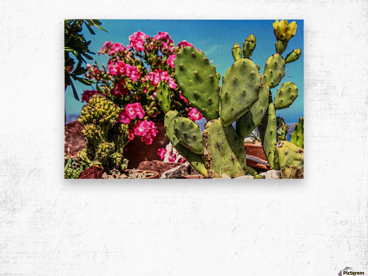 Cactus and colourful Flowers Wood print