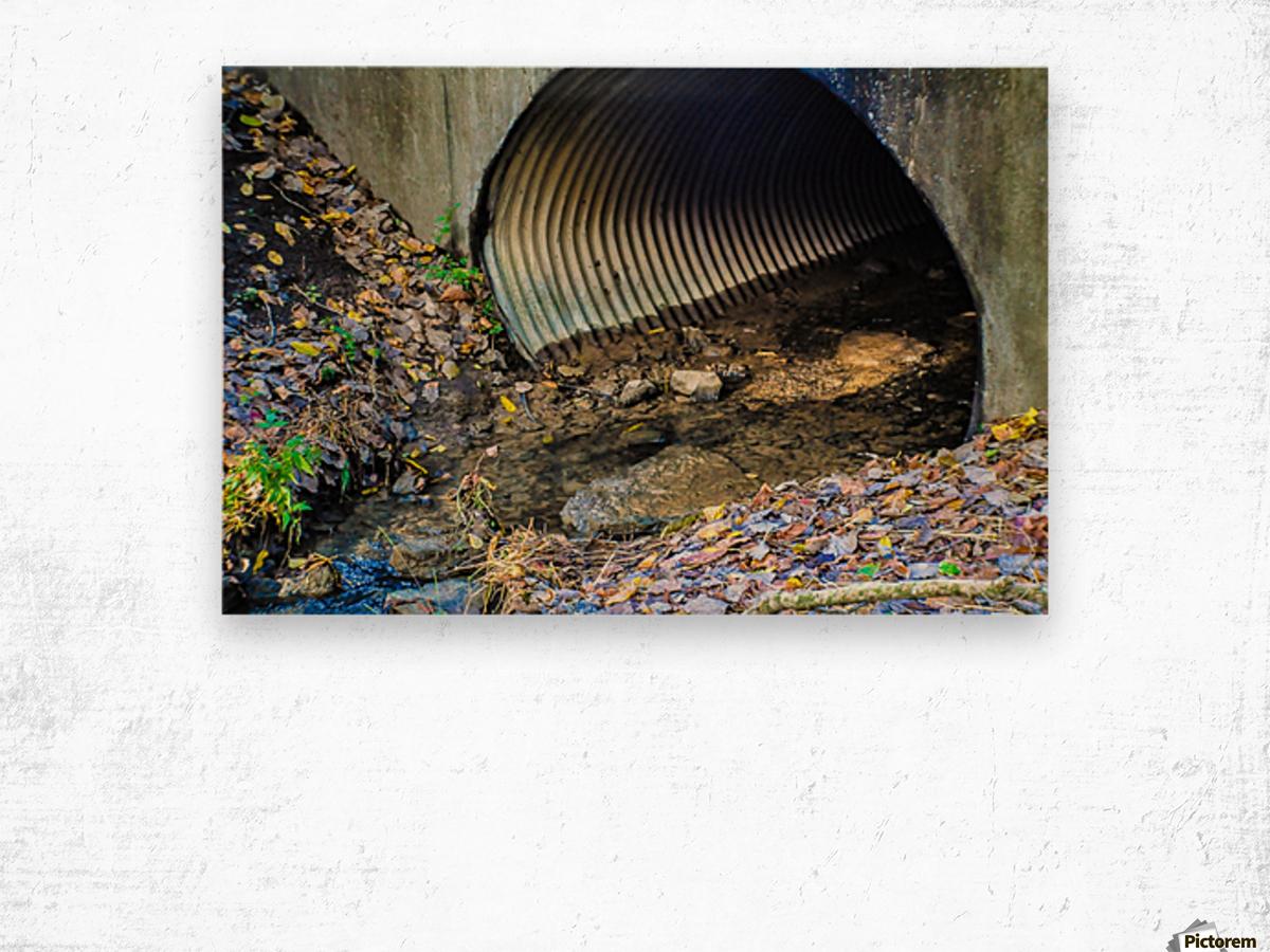 Secret Tunnel Wood print