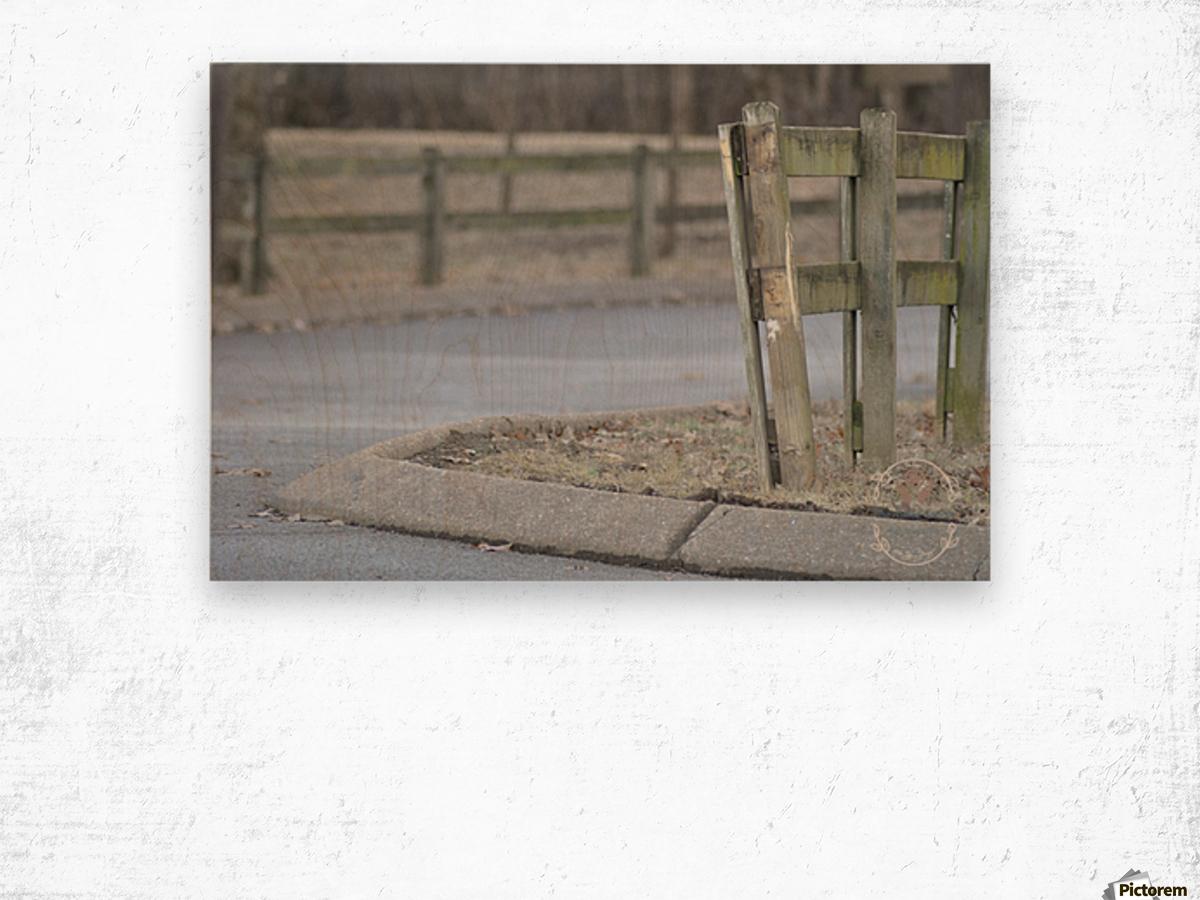 Around the Fence Wood print