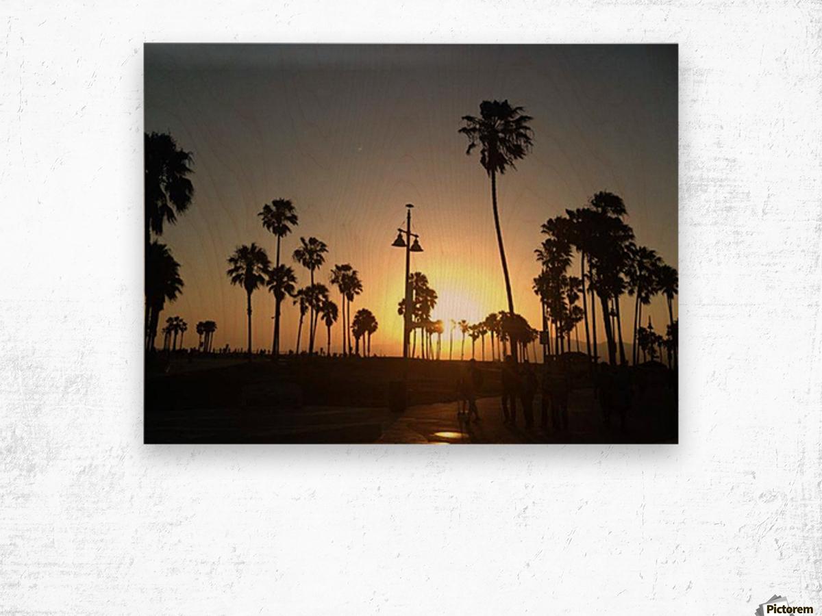 Venice Beach, California Wood print