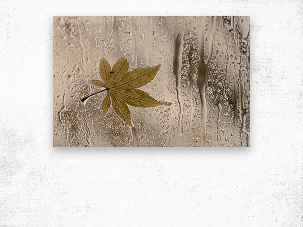 Melancolie Wood print