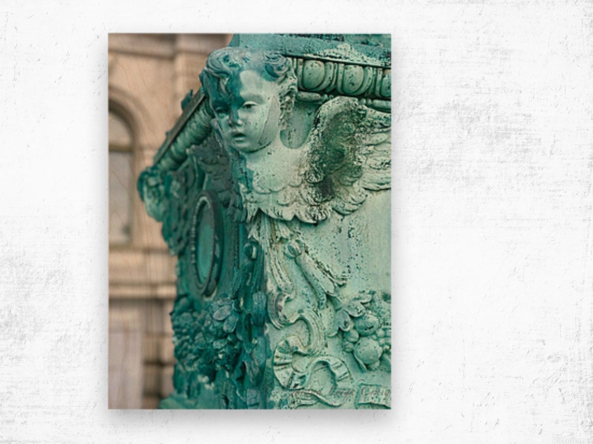 Capital Statues Wood print