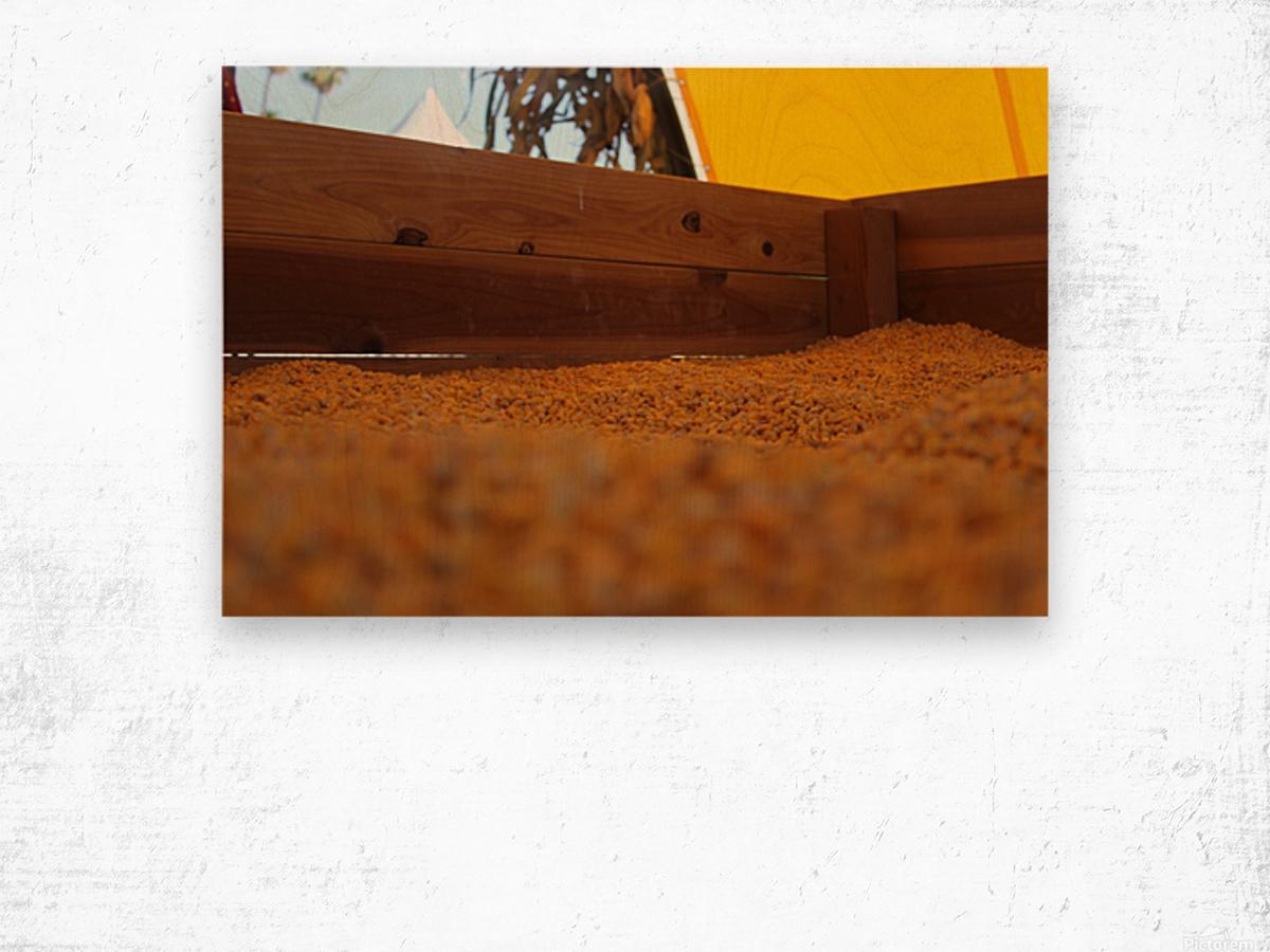Dried Corn 02 Wood print