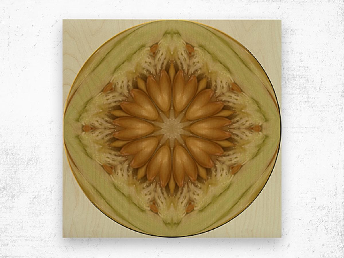 melon 1 Wood print