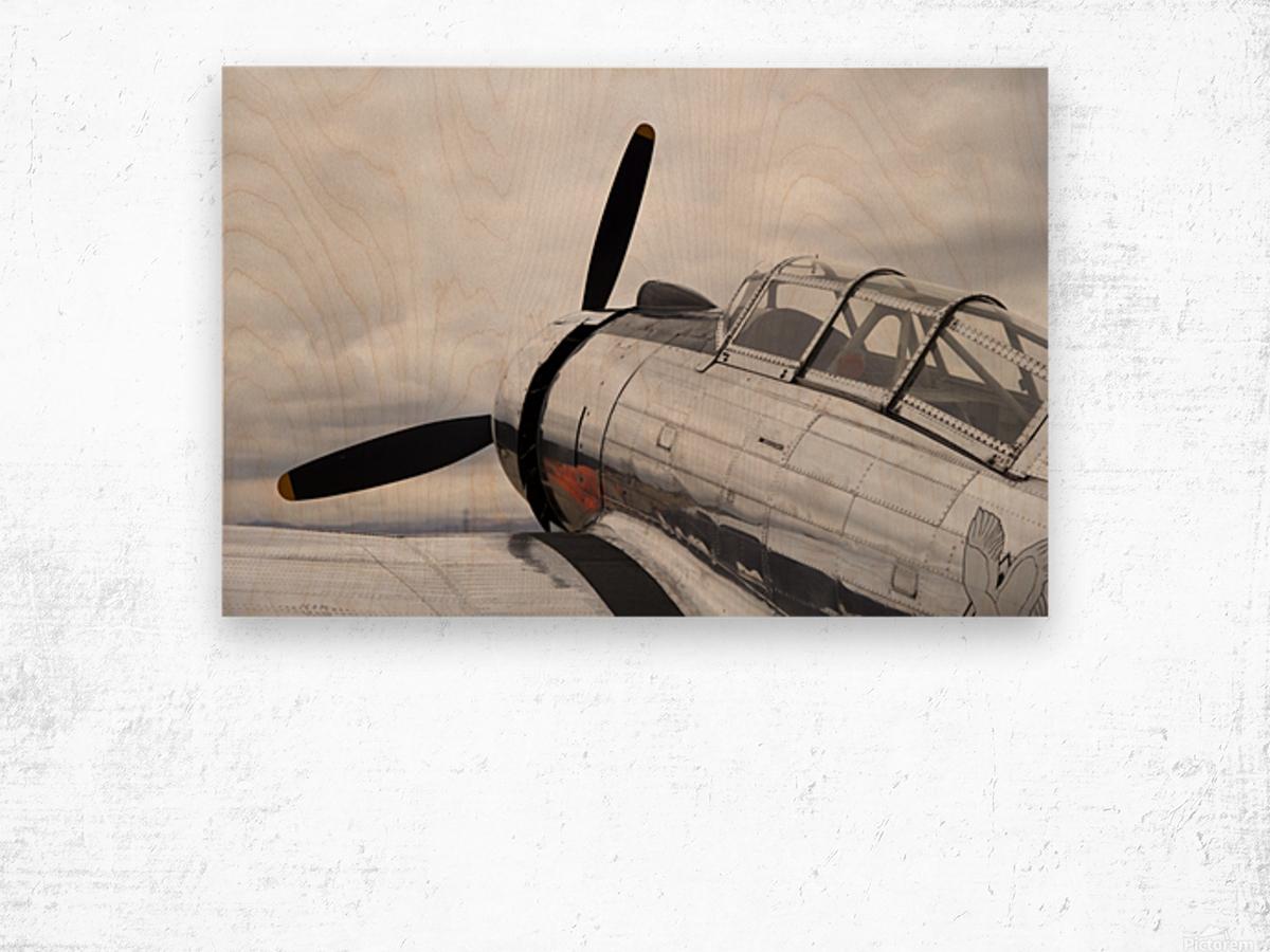 P-53 Nose Wood print