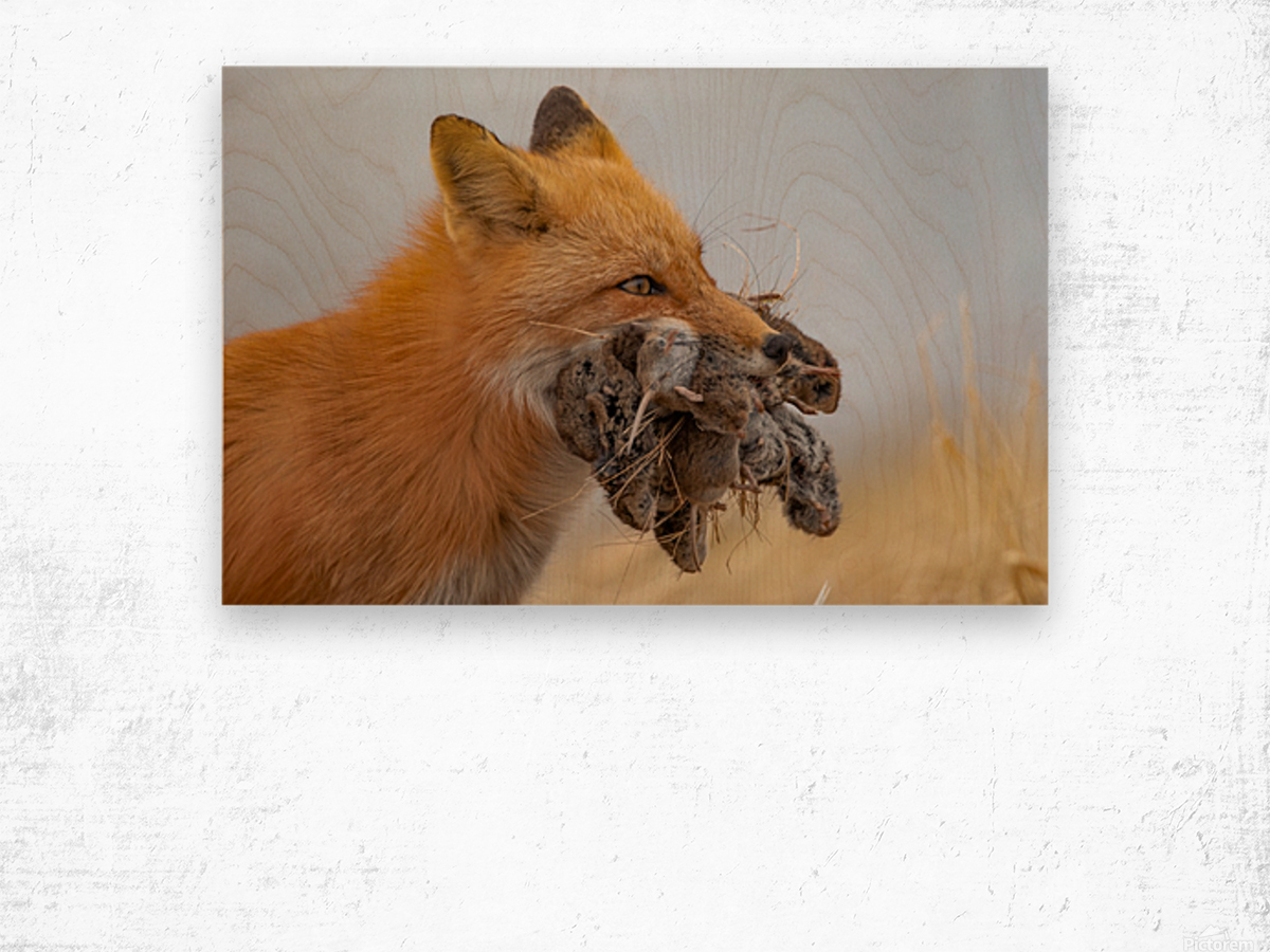 Supper on the Way Wood print