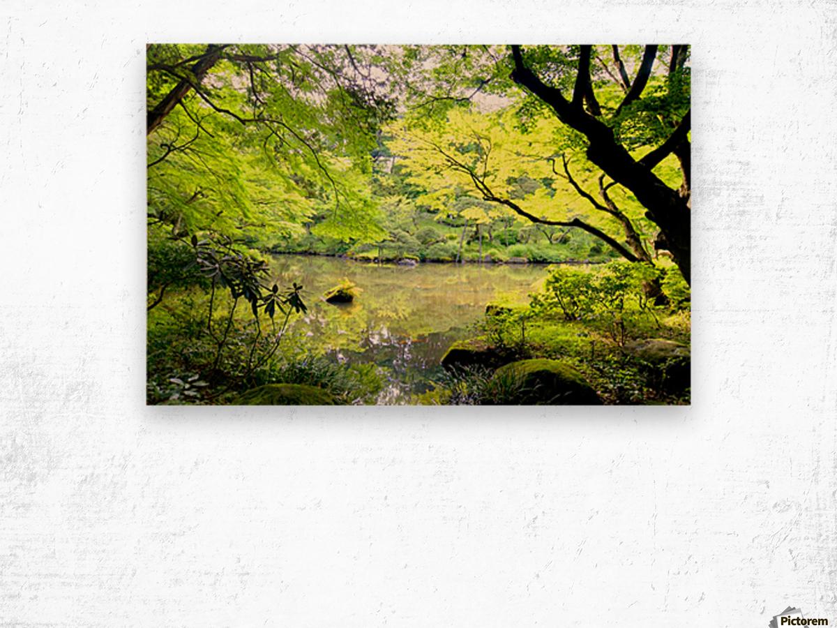 Tokyo Garden Wood print