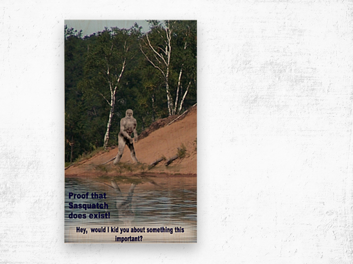Sasquatch1 Wood print