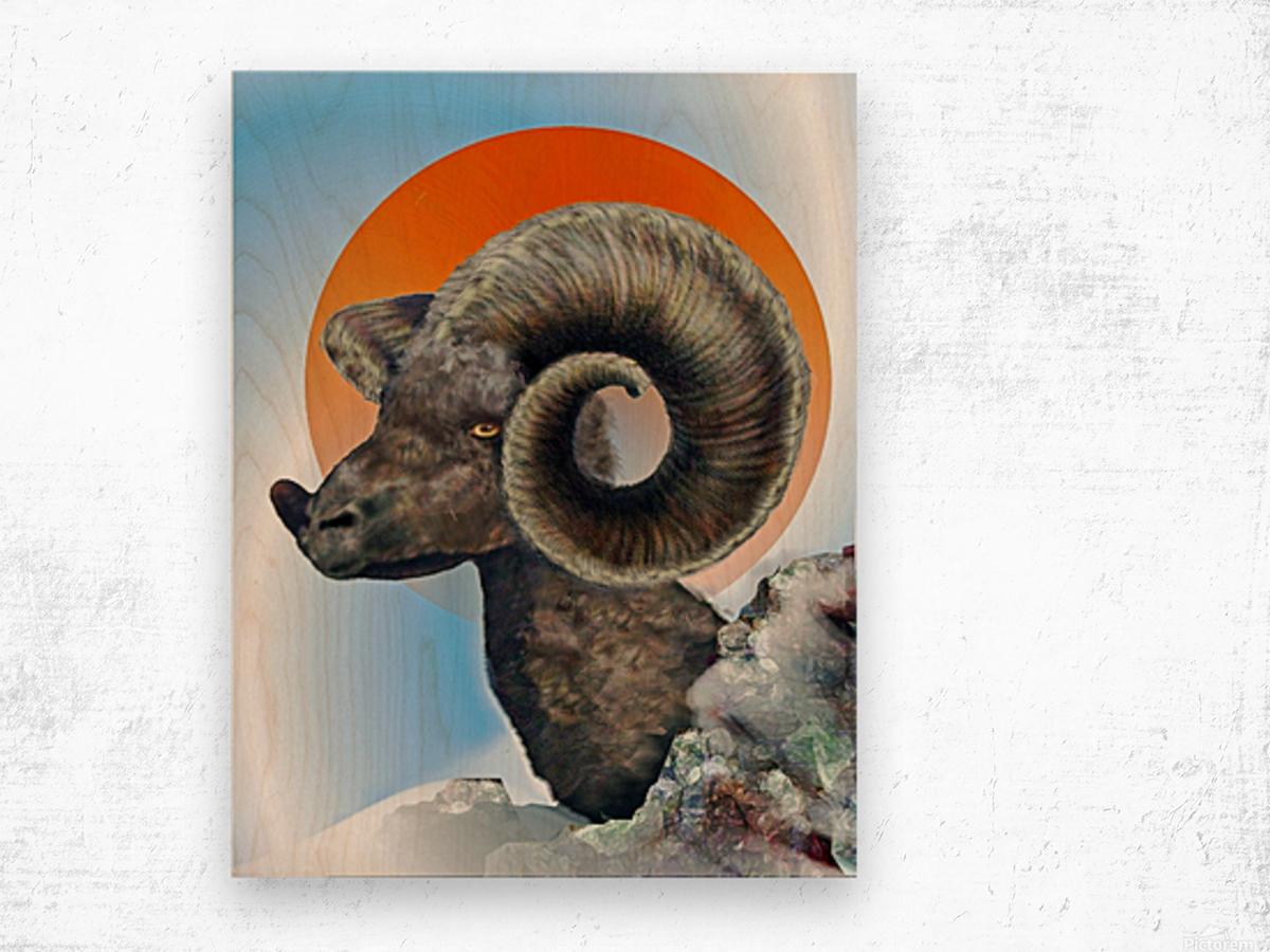 Ram Wood print