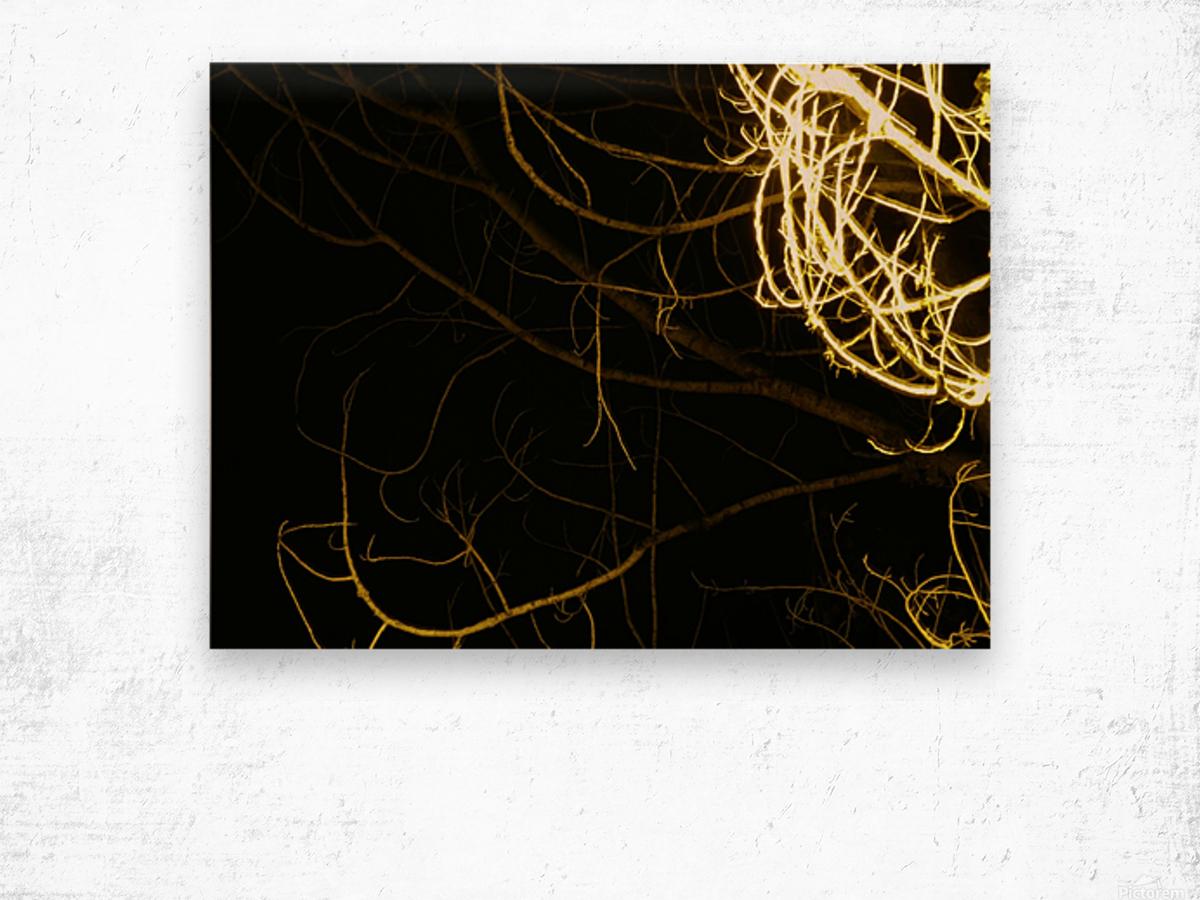 A (11) Wood print
