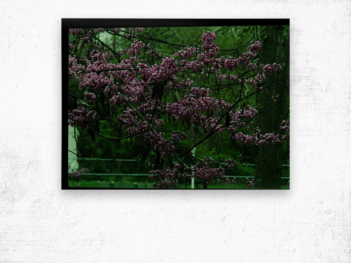 sofn-094A1D2D Wood print