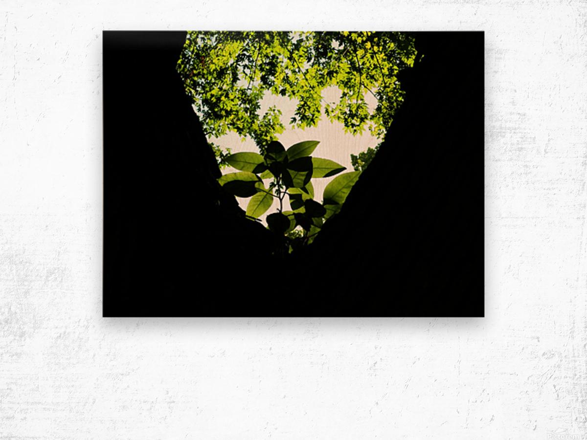 sofn-5DA369EA Wood print