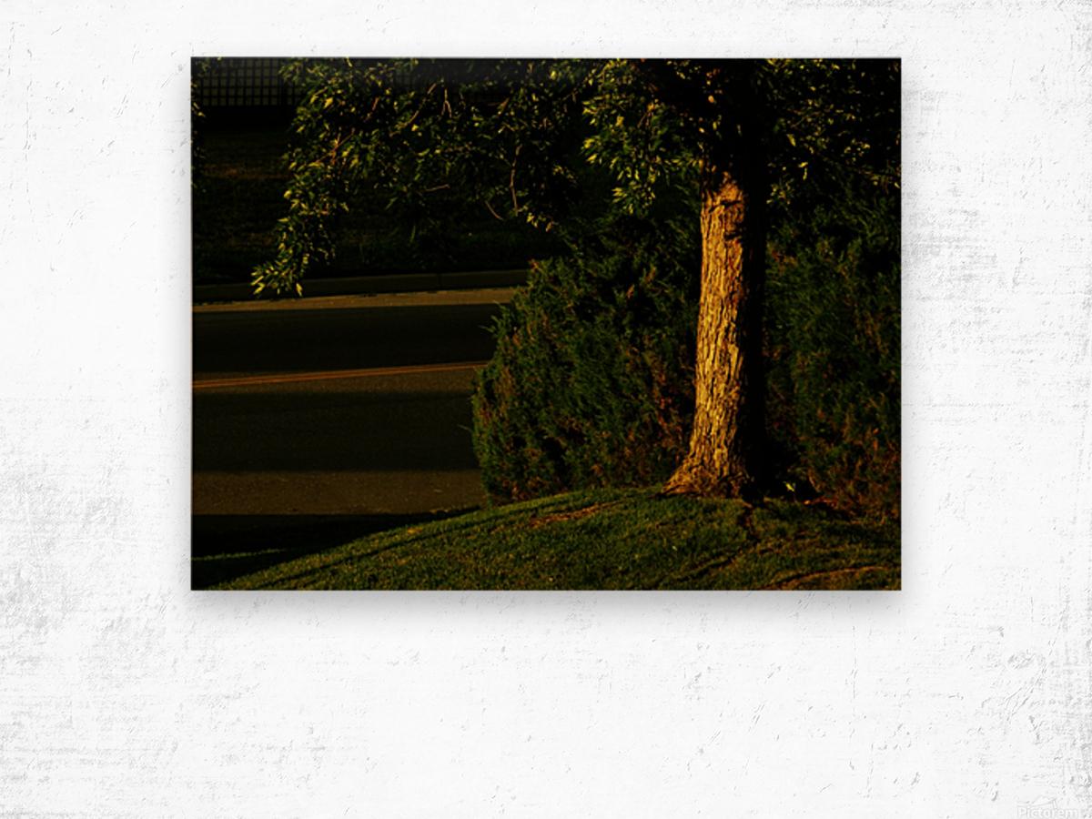 sofn-3048EECD Wood print