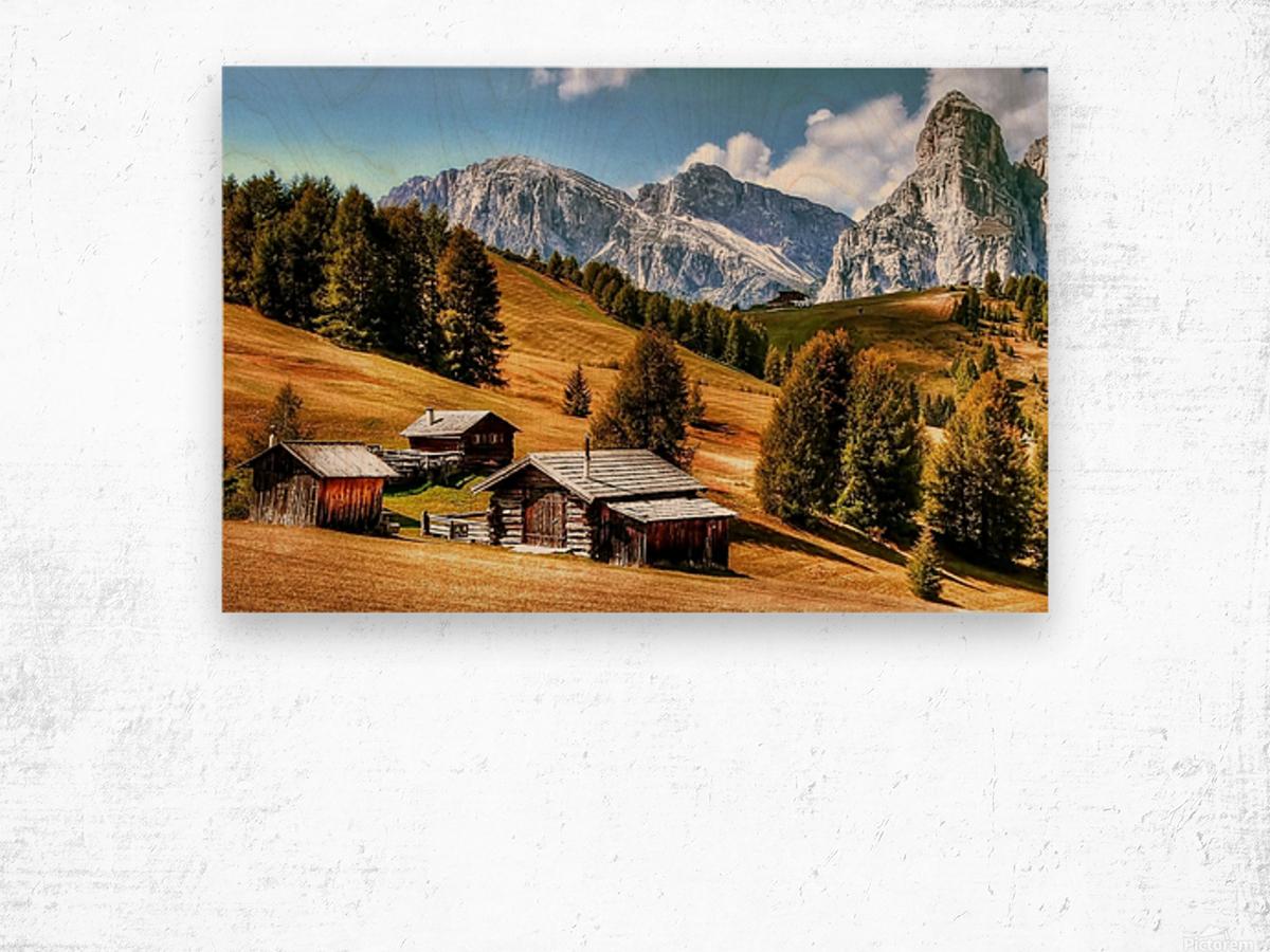Italy DL_2179605 Wood print