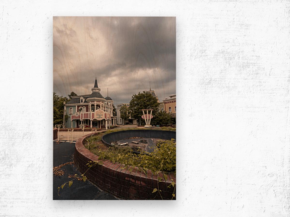 Abandoned Theme Park Missouri Usa Wood print