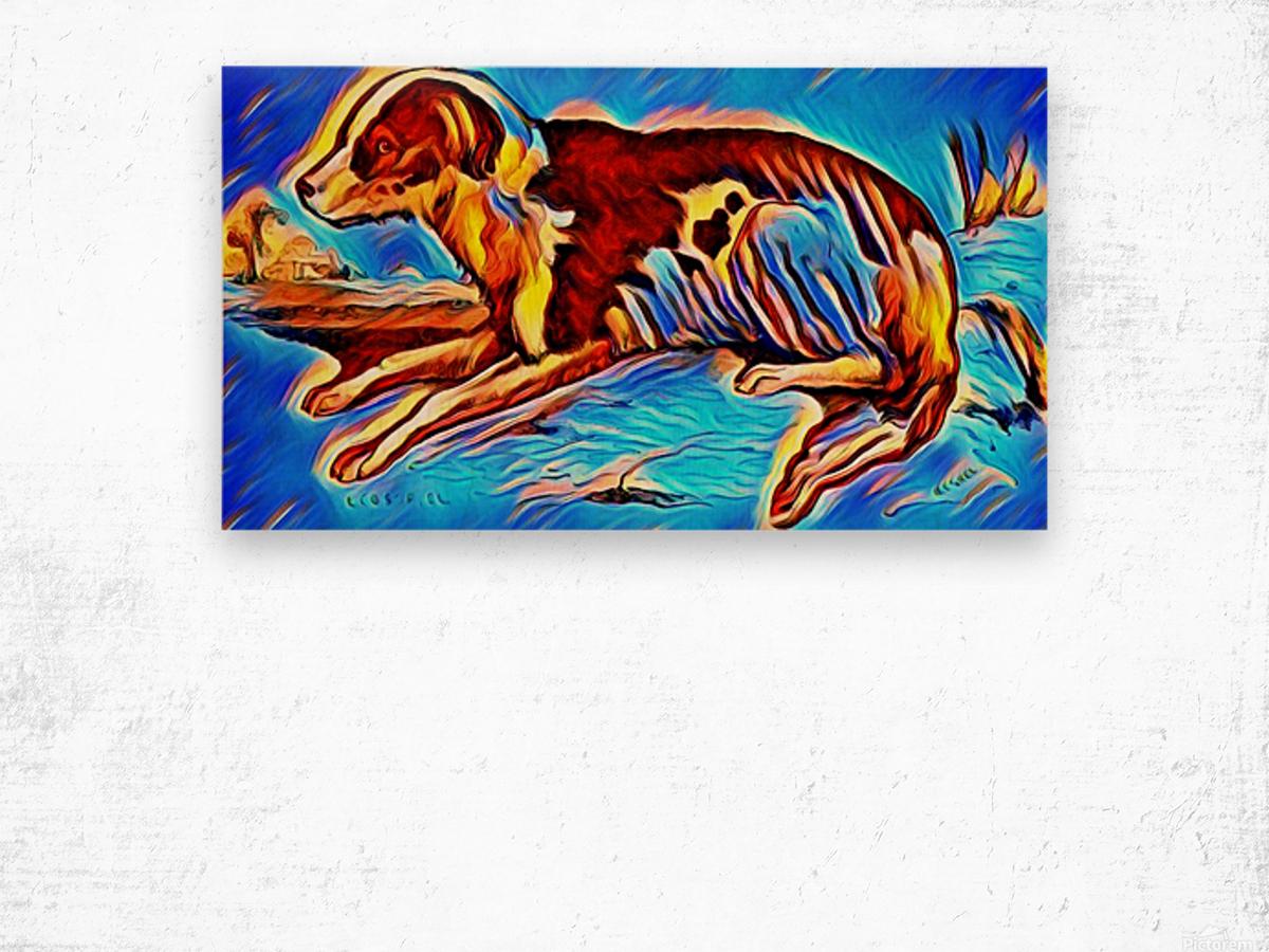 Dog_Splash_OSG Wood print