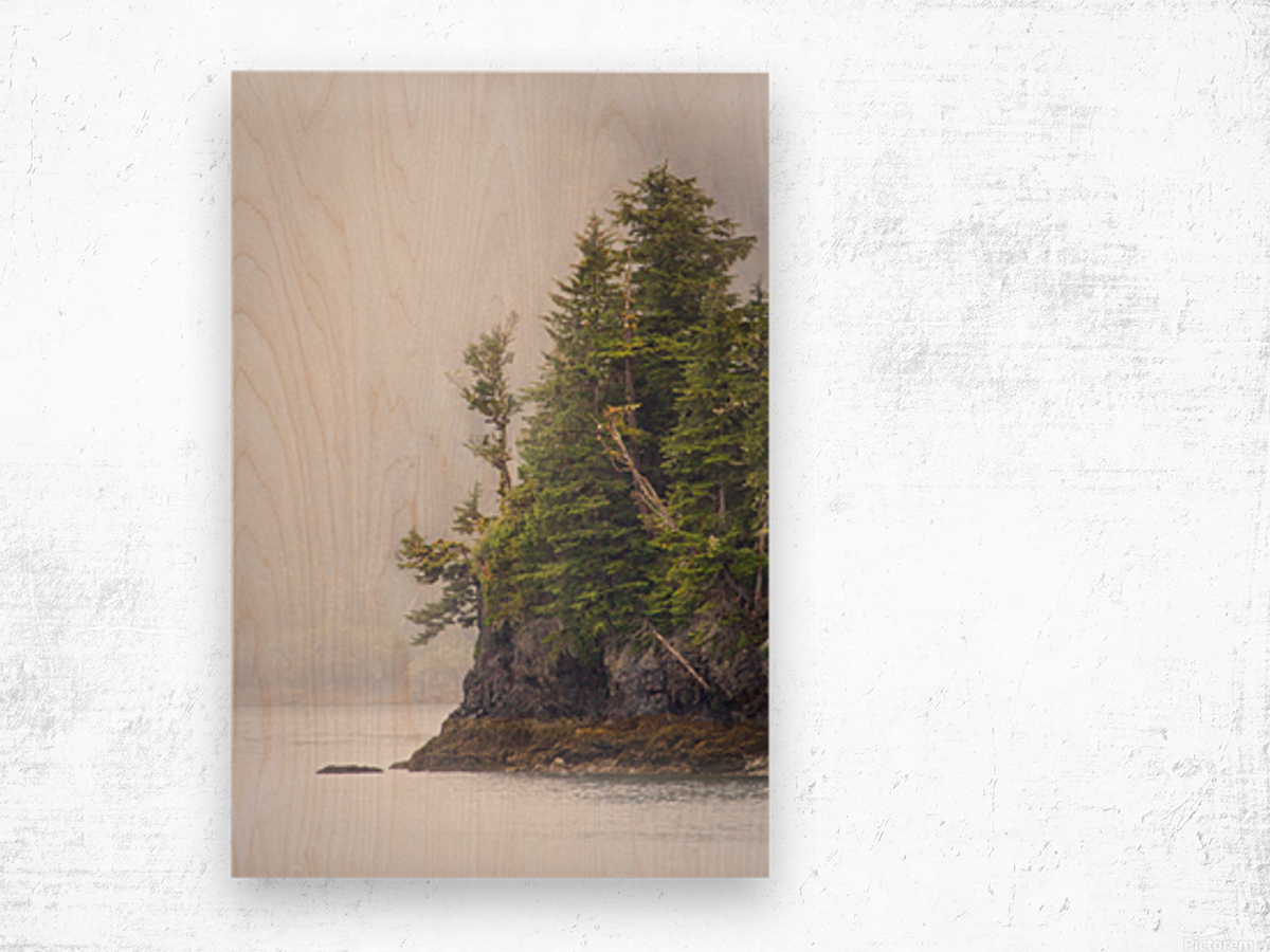 Photos Alaska Mountains Wood print