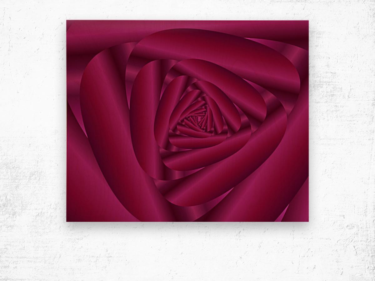 Pink Color Rose Swirl Art Wood print