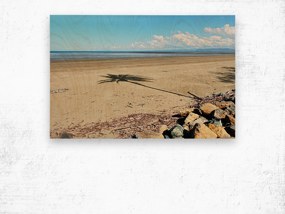 Beach Palm Tree Wood print