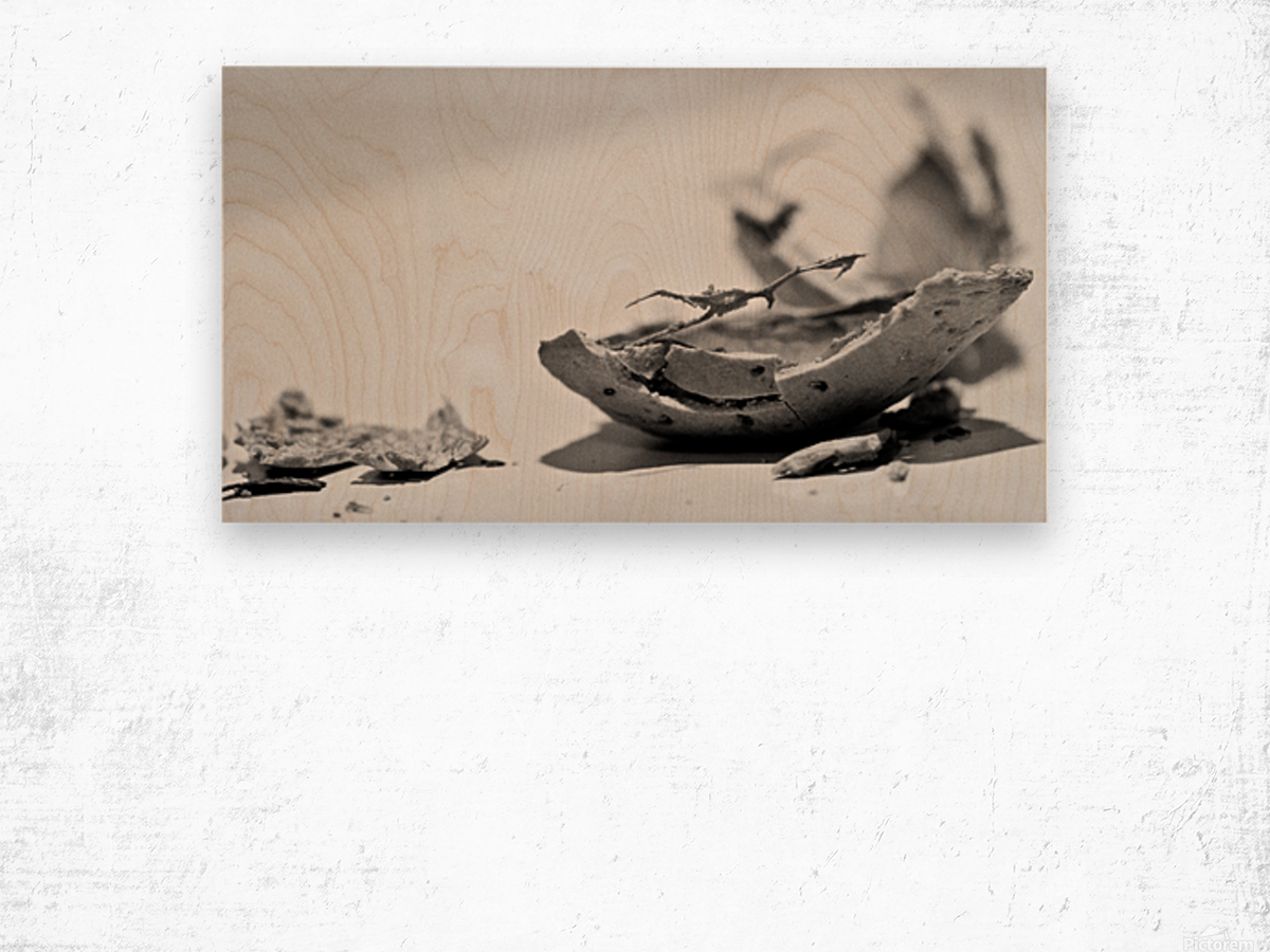 Humanity 046 Wood print