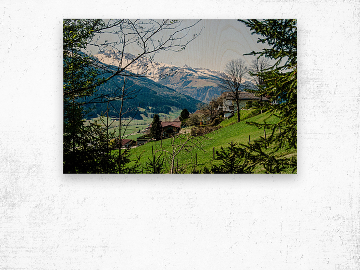 In The Alps Wood print