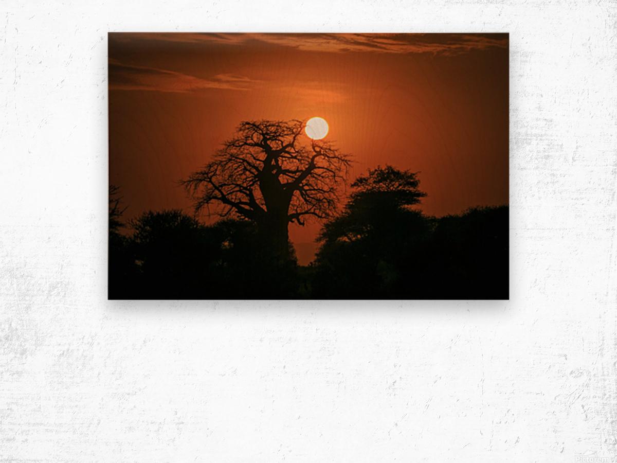 _49R8851 Wood print