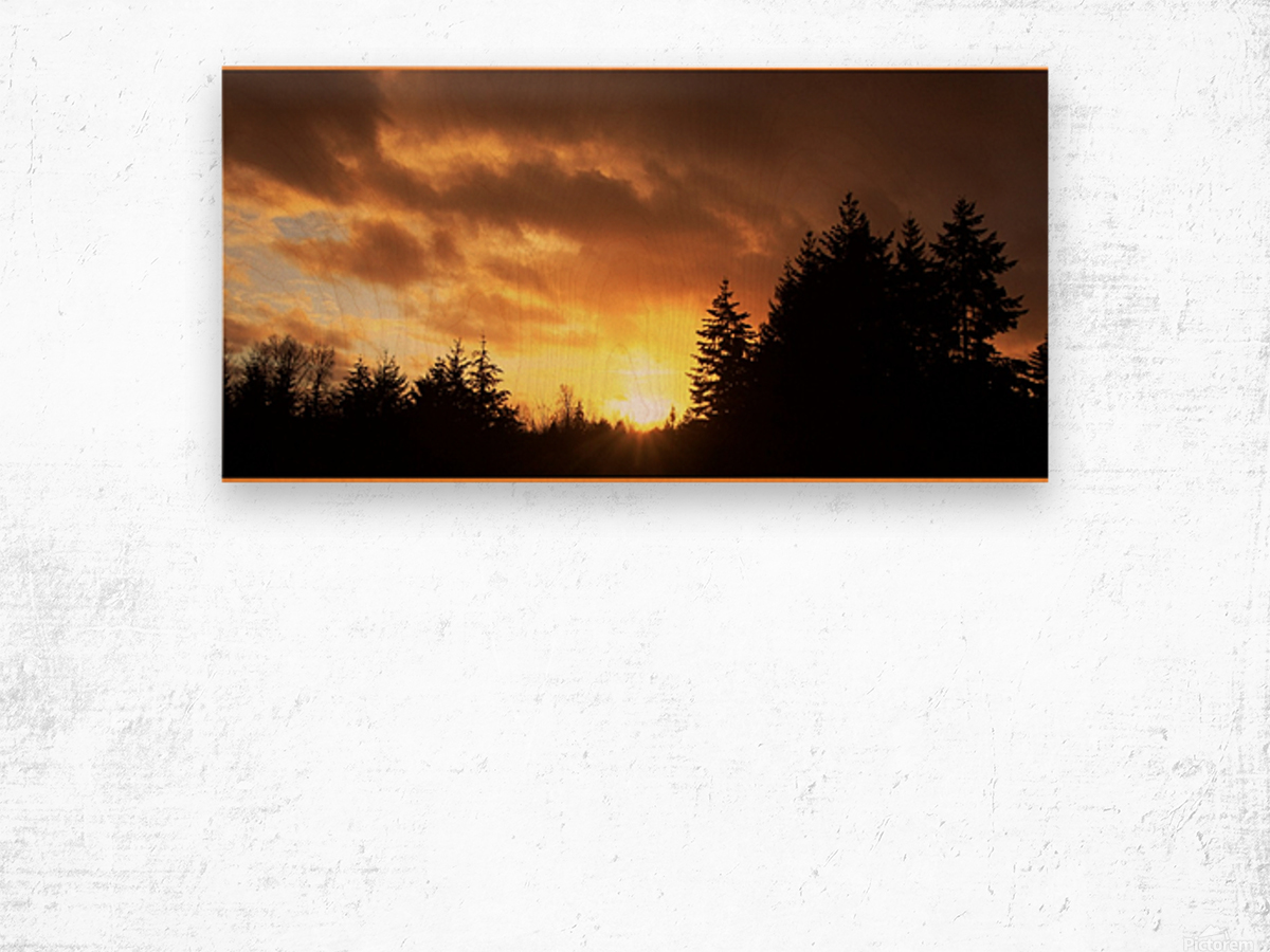 Sour Set Wood print
