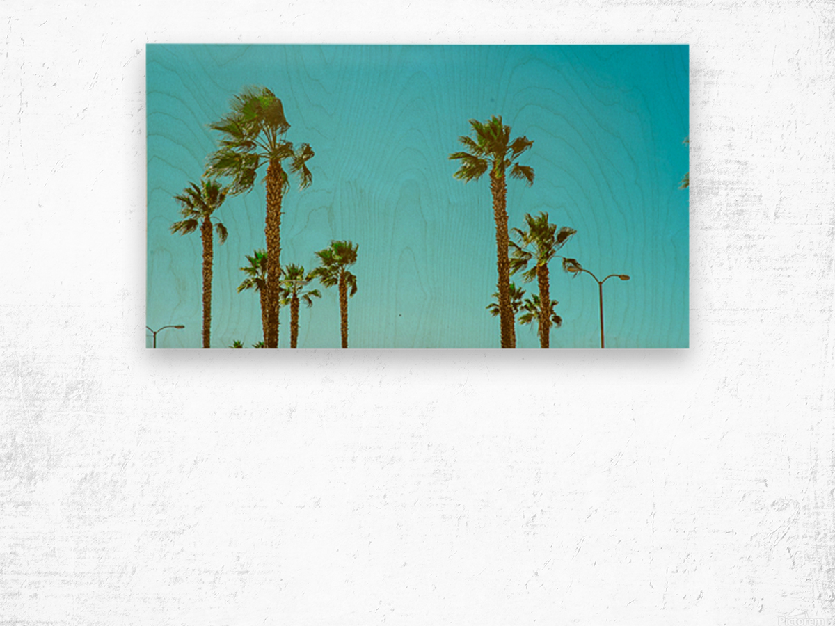 Hollywood Vibes Wood print