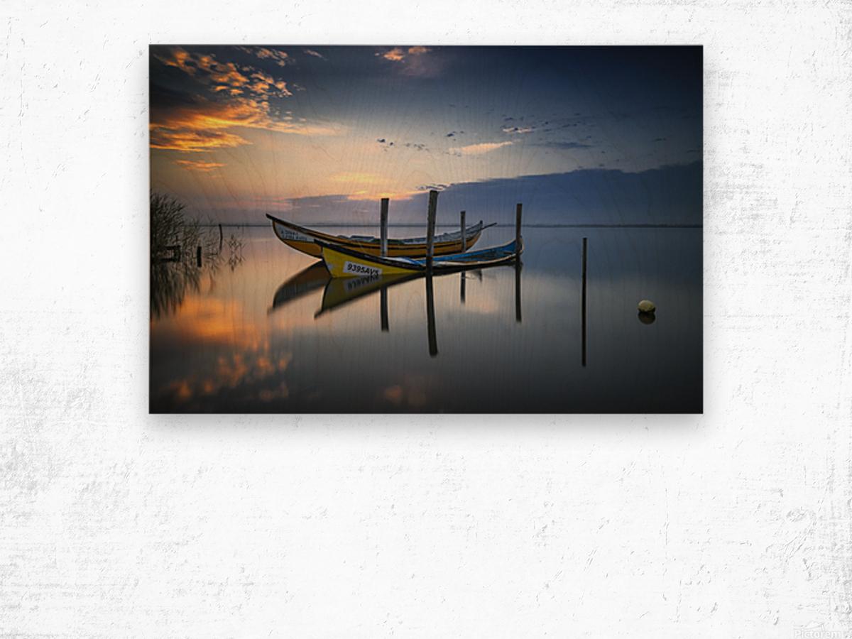The boats Wood print