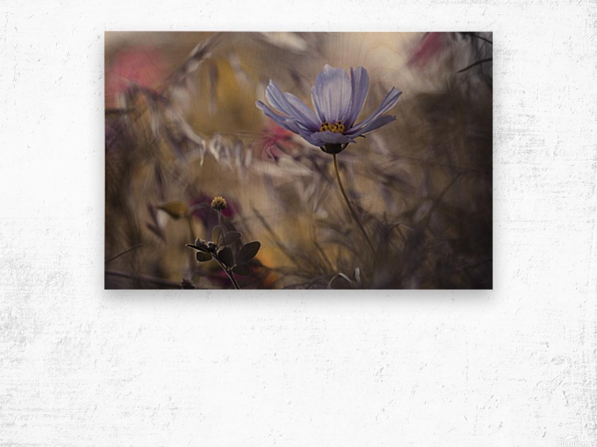 Things that flowers tell Wood print
