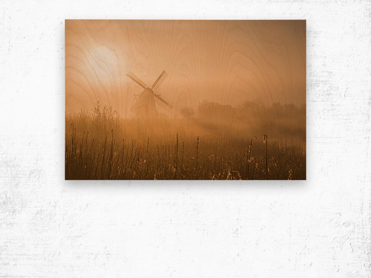 Golden Dawn. Wood print