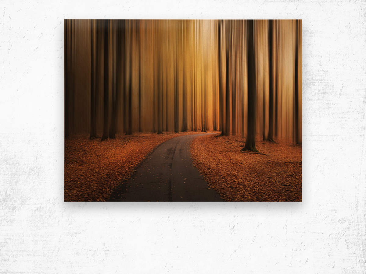 Path to unknown Wood print