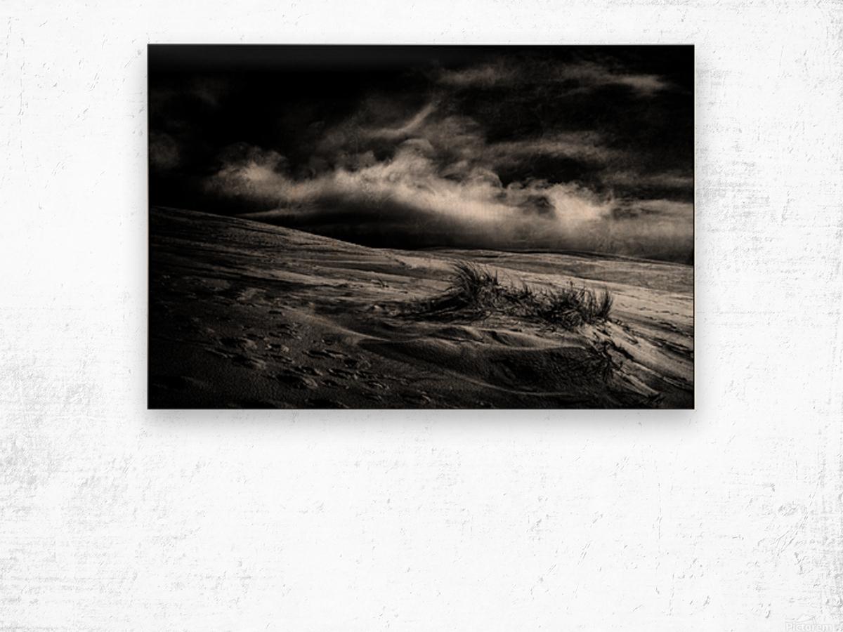 marram grass Wood print