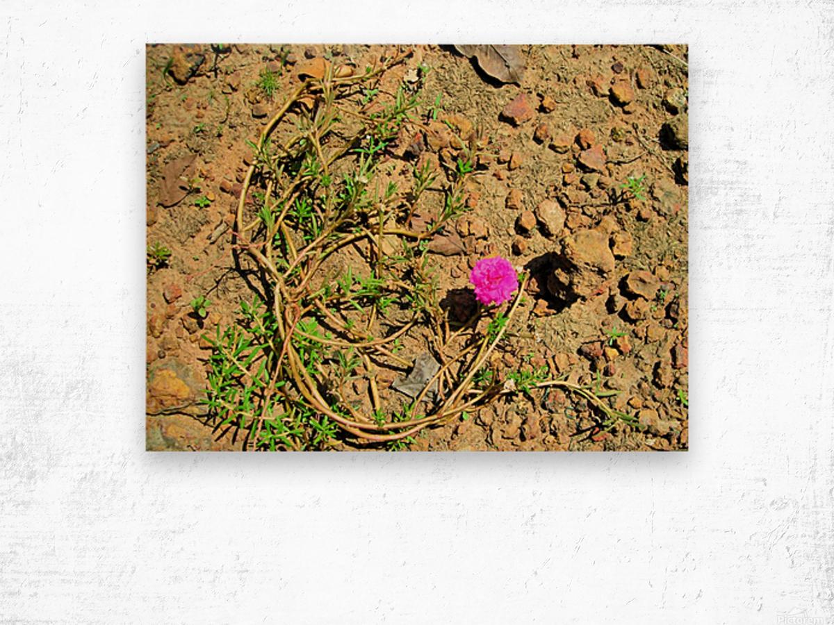 Flower16 Wood print