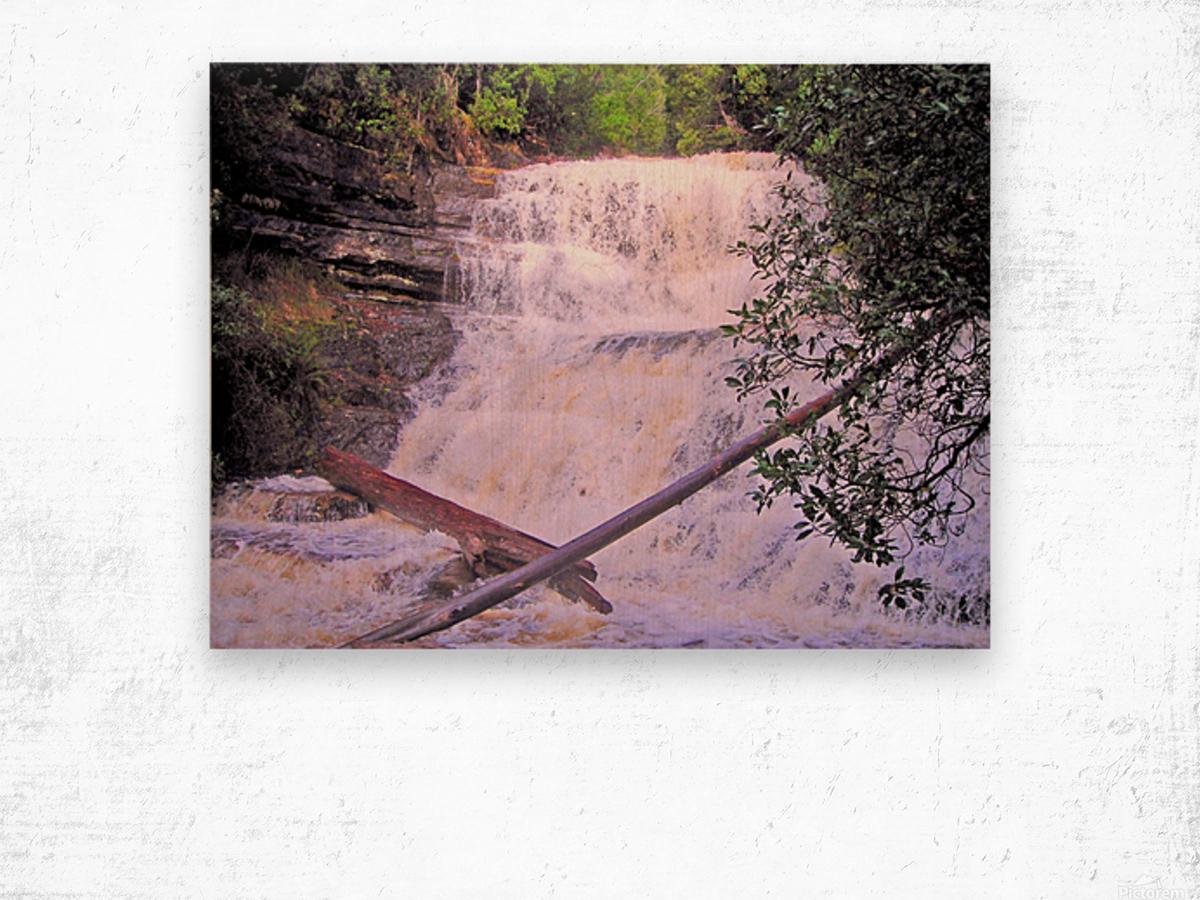 Waterfall8 Wood print