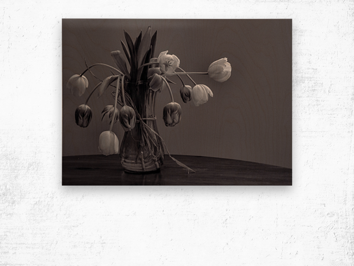 Tired tulips Wood print