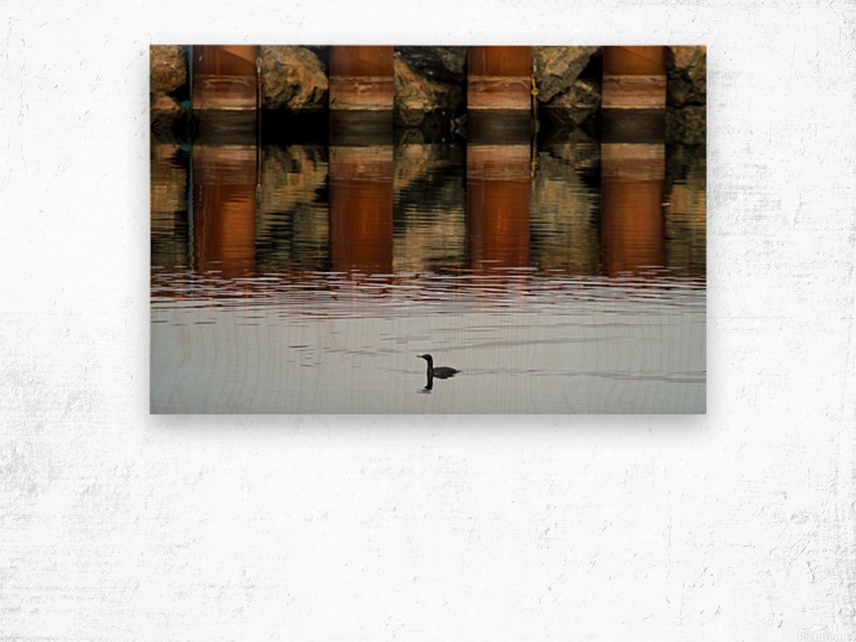 The breakwater Impression sur bois