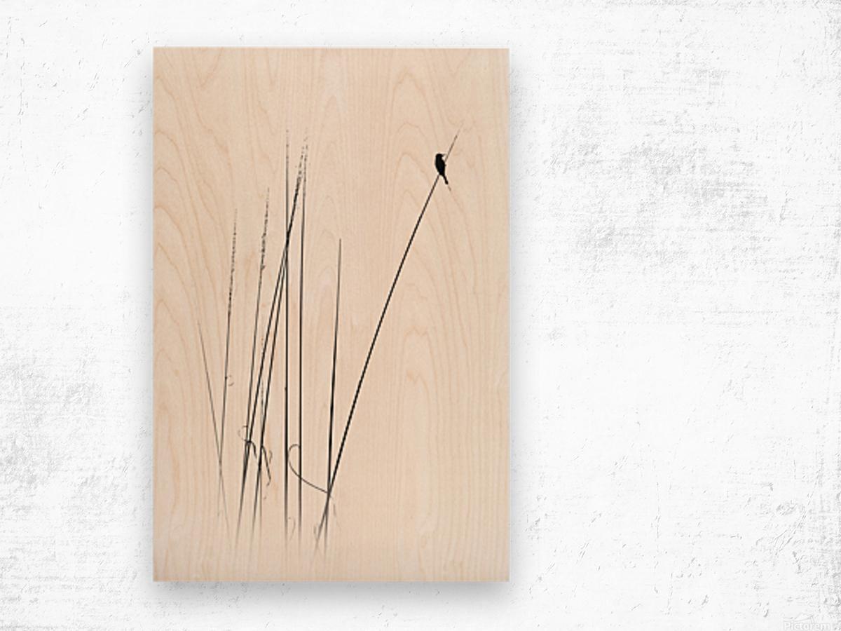a sabbatical Wood print