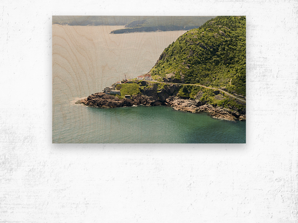 Johns Harbour from Signal Hill 2 Wood print