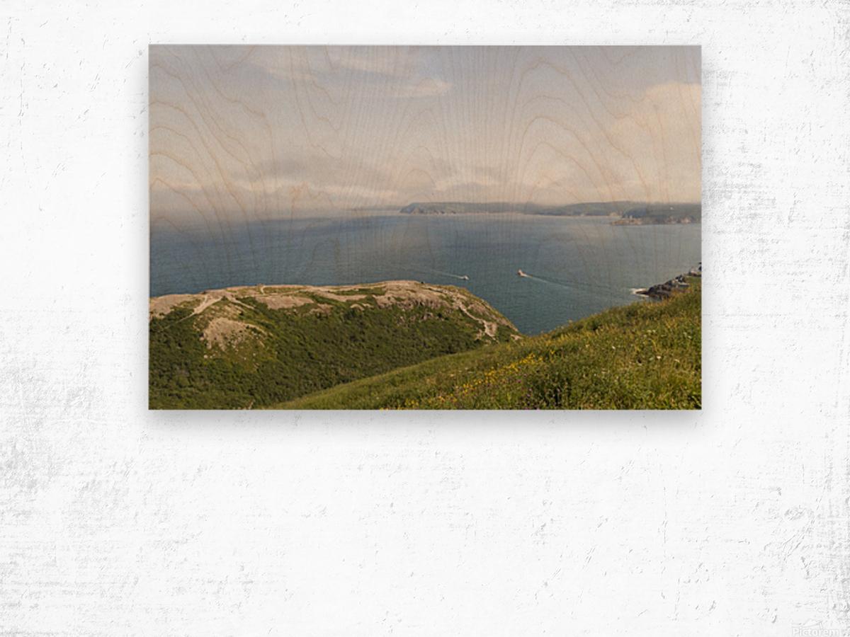 Vista from Signal Hill Wood print