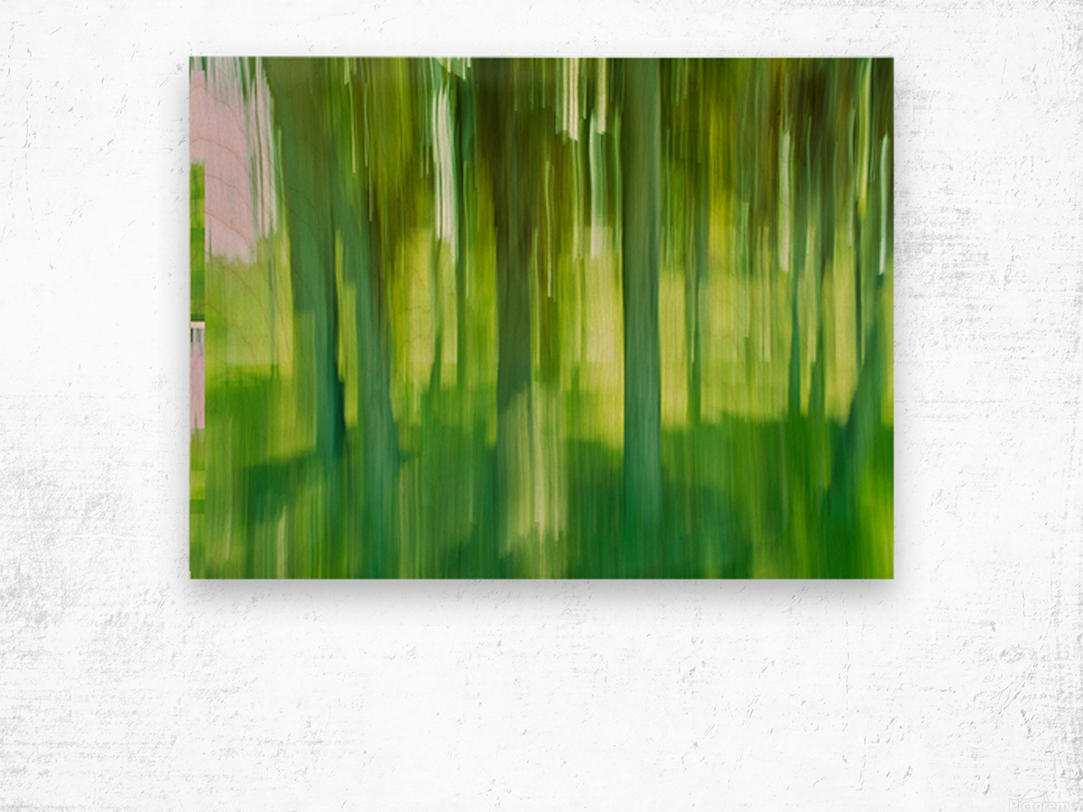 Moving Trees 12 Green Landscape 52-70 360px Wood print