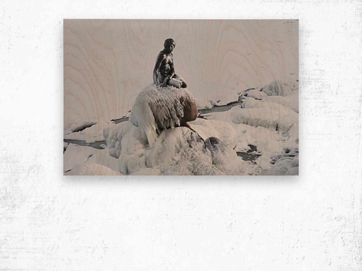 Frozen canal near statue of The Little Mermaid  Wood print