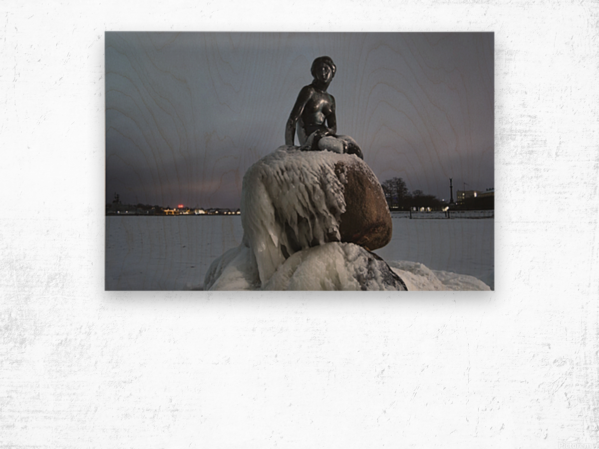 Frozen statue of The Little Mermaid Wood print