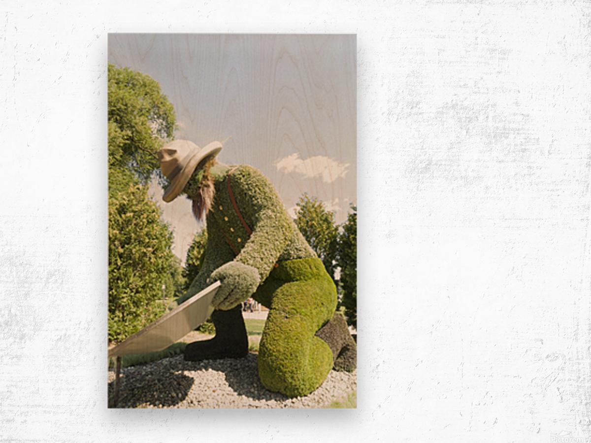 Yukons entry: The Prospector 1 Wood print