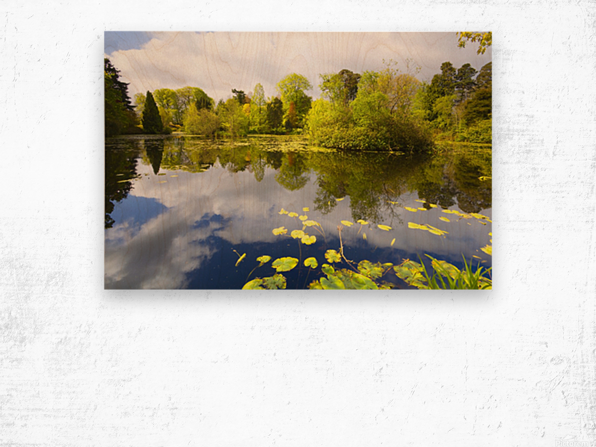 CW 029 Altamont Garden, Co.Carlow Wood print