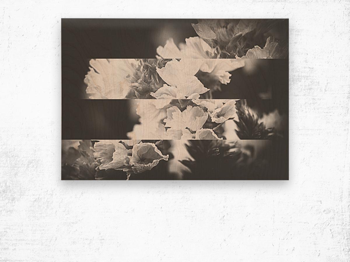 Flower Bells Collage BnW Wood print