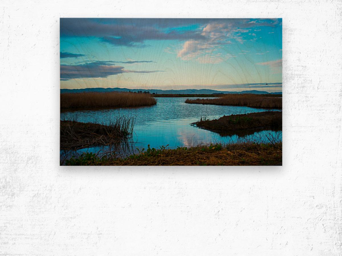 20190228 DSC_0065 2 Wood print