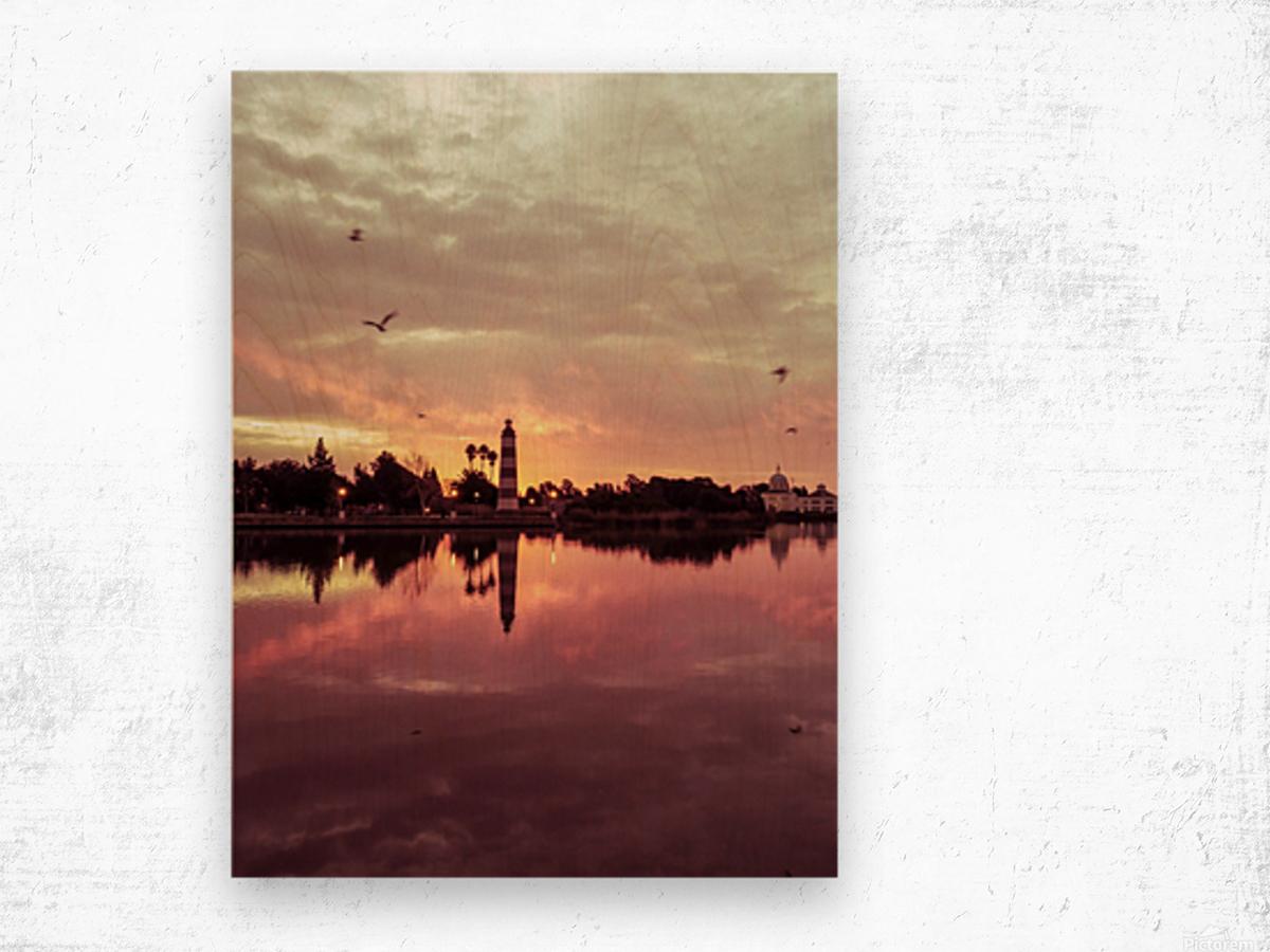 20190212 IMG_3260 Wood print